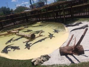 Fun Spot-Gator Spot 039