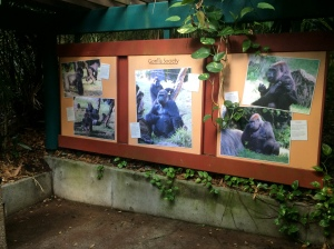 Busch Gardens and Fun Spot America 211