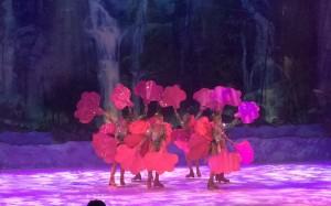 Busch Gardens and Fun Spot America 229