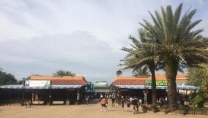 Busch Gardens Tampa 067