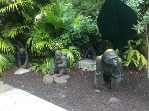 Busch Gardens Tampa 079