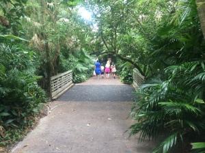 Busch Gardens Tampa 081