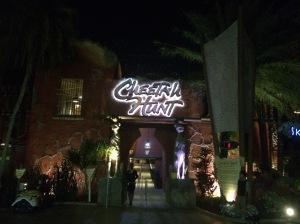 Busch Gardens 152