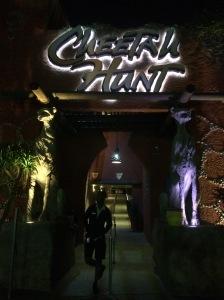 Busch Gardens 153