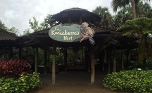 Busch Gardens and Fun Spot America 042