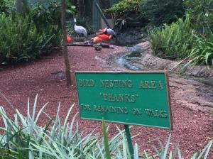 Busch Gardens and Fun Spot America 046