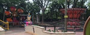 Busch Gardens and Fun Spot America 069