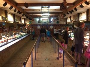 Busch Gardens and Fun Spot America 106