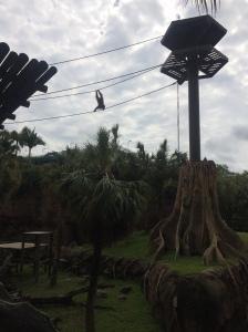 Busch Gardens and Fun Spot America 142