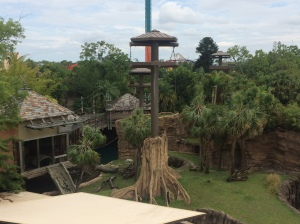 Busch Gardens and Fun Spot America 156