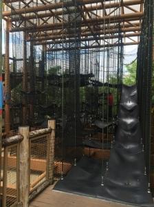Busch Gardens and Fun Spot America 159