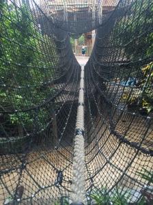 Busch Gardens and Fun Spot America 160
