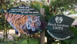 Busch Gardens and Fun Spot America 174