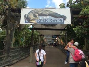 Busch Gardens and Fun Spot America 177