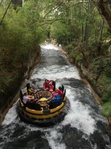 Busch Gardens and Fun Spot America 178
