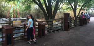 Busch Gardens and Fun Spot America 180