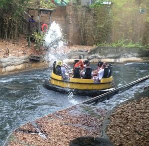 Busch Gardens and Fun Spot America 181