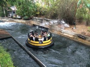 Busch Gardens and Fun Spot America 183