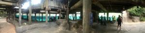 Busch Gardens Tampa 116