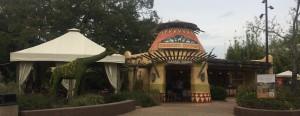 Busch Gardens Tampa 130