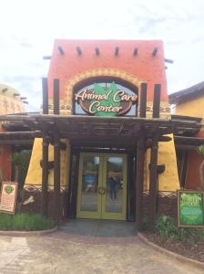 Busch Gardens Tampa 131