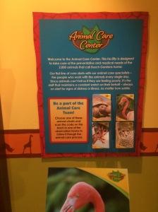 Busch Gardens Tampa 138