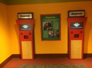 Busch Gardens Tampa 143