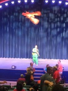 Busch Gardens Tampa 154