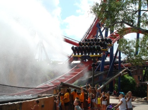 Floorless Sheikra 011 (2)