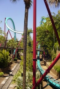 Here's the Cobra Roll which wraps around the entry bridge the the Congo River Rapids. (2)