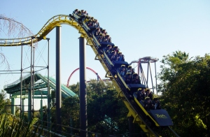 Python was the first coaster in Florida to go upside down. (2)