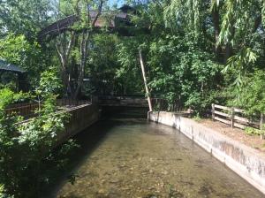 Lagoon Park 114