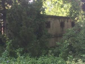 Lagoon Park 216